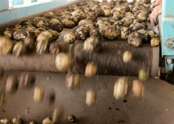 De opportuniteiten en uitdagingen in de Waalse voedingsindustrie