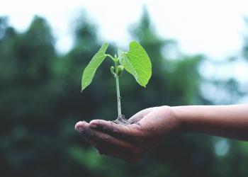 Breekt duurzame consumptie door in 2021?